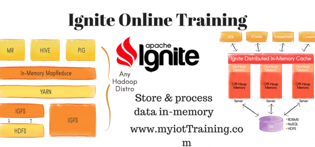 Ignite online training